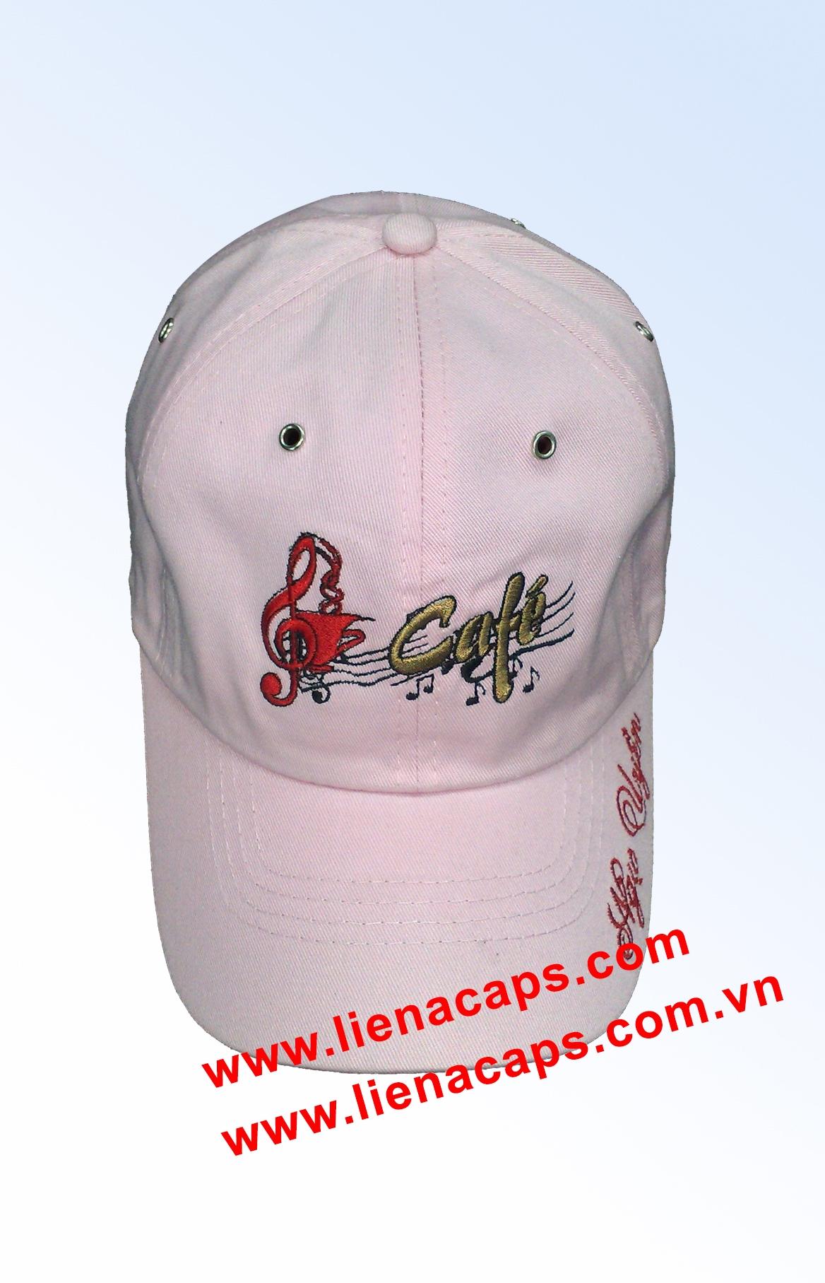 Cap 29